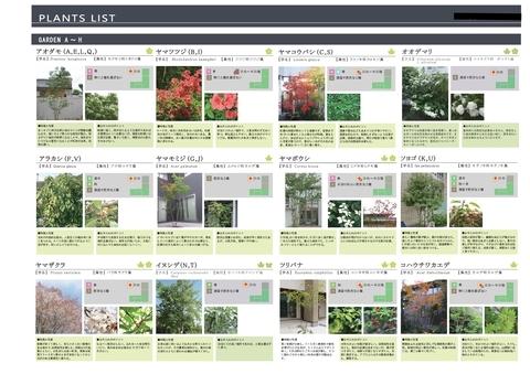 岡崎市 Y邸、庭木、植物の豊富なお庭